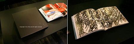 Puma by Mihara Yasuhiro Collectors Book