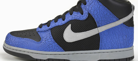 Nike Dunk 2008 January Releases