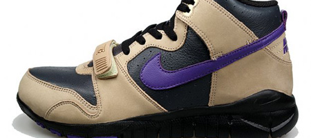Nike Trainer Dunk Tan/Purple