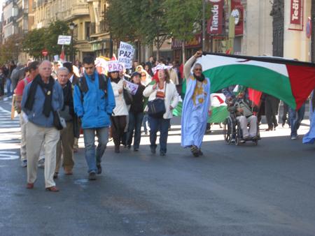 sahara-protest-1