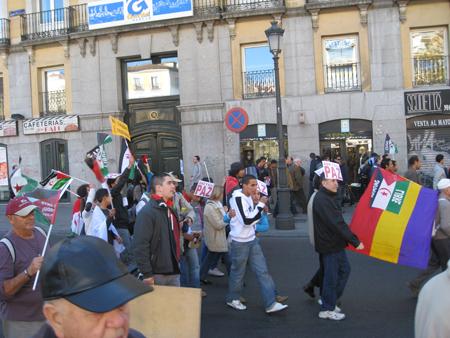 sahara-protest-2