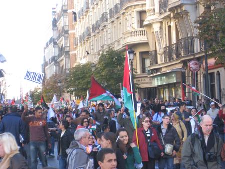 sahara-protest-4