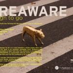 areaware_pop_shop_1