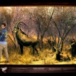 UNION LA 'Into The Wild' Lookbook 10