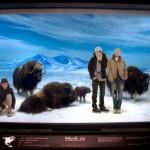 UNION LA 'Into The Wild' Lookbook 2
