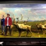 UNION LA 'Into The Wild' Lookbook 3