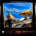UNION LA 'Into The Wild' Lookbook 9