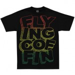 flying-coffin-2011-05