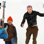 damien-hirst-flea-guitar-0