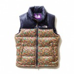 liberty-the-north-face-purple-label-2012-fall-winter-outerwear-1